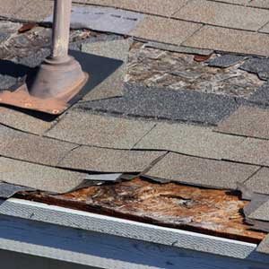 Palm Harbor Roofing Roofing Repair Amp Replacement Expert